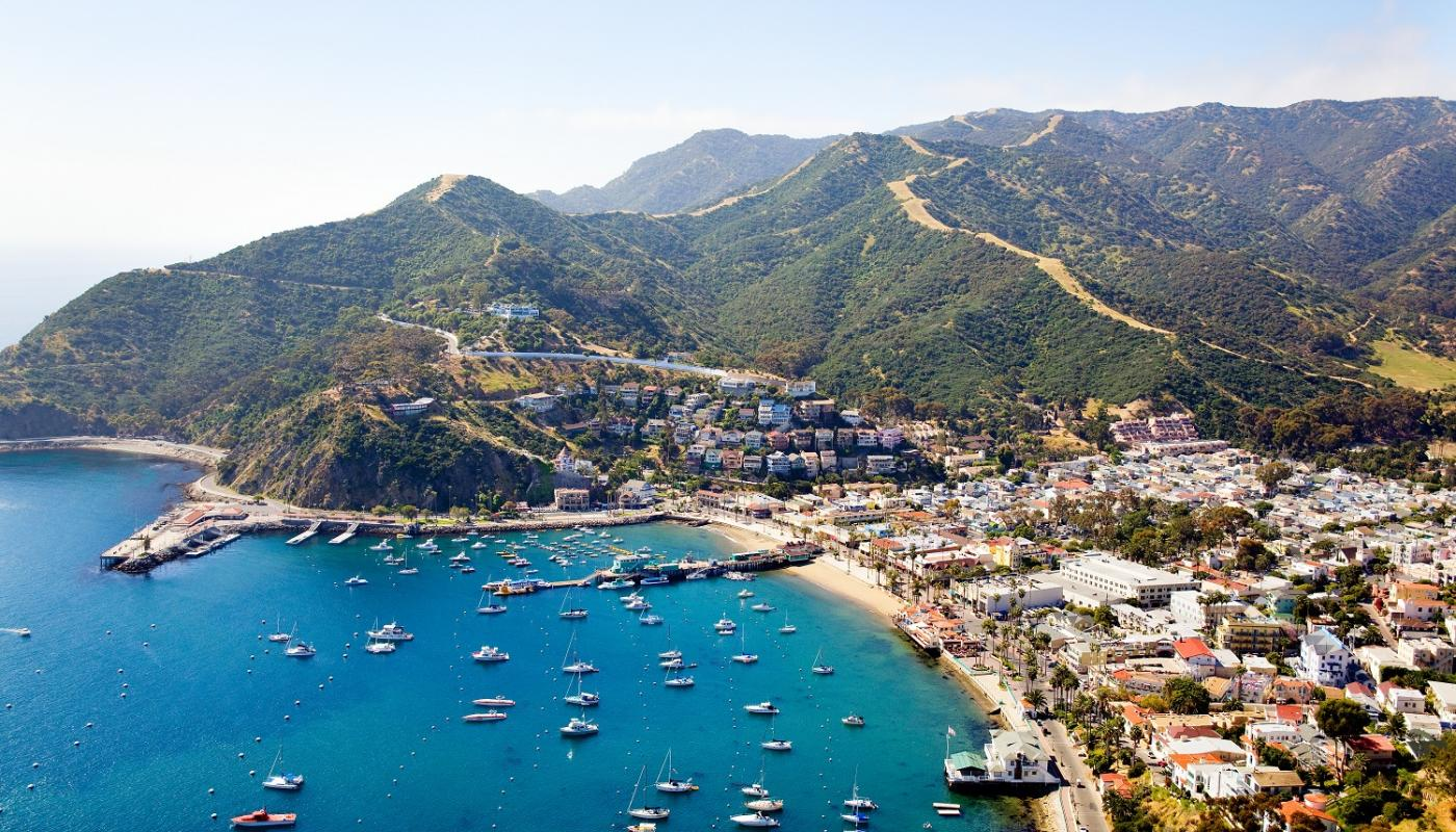 Catalina Day Trips